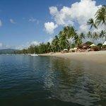 Strand Lipa Noi - Blick auf das Hotel Kanok Buri