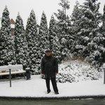 напротив входа в отель (два дня снег, потом растаял)