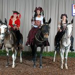 Costume Class at the mule show