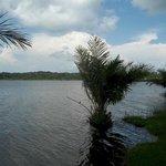 Lakeside, Pearl Gardens