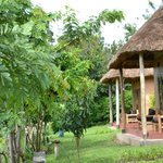 Pumba Safari Cottages Foto