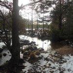 Loch an Eilein -Feb 2013
