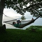 relaxing in one of the hammocks
