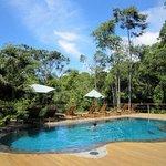 piscine au milieu de la Rain Forest, rien de mieux après une