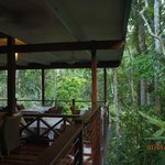 Silky Oaks Restaurant in the rainforest