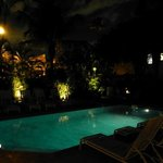 Garden and pool at night