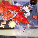 This day did not end well for Bob, the lobster. Nice local beer, too.