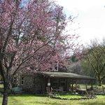 Rockhouse Cottage