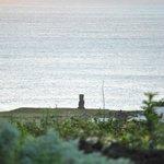 Vista desde el jardín (Moai de fondo)