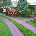 path to our cabinas