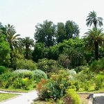 Rome botanic garden in trastevere