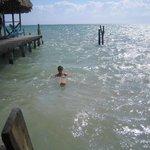 Taking a swim right off the pier...so fantastic!