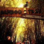 The Bamboo trail!
