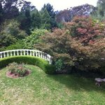Lovely view of the garden we plan to be married in
