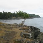 Rocky outcrop by the sea along the trail.