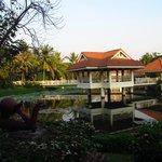 Pond in garden