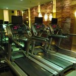 Treadmills at Elixr Gym