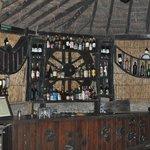 Chitwan Jungle Lodge Foto