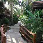 pathways to cabins