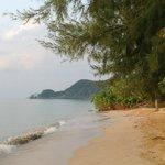 Skøn skøn strand som blev revet hver morgen