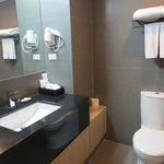 Bathroom sink/toilet