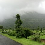 The place that is bhandardara