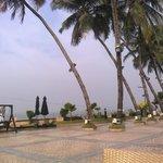 Poolside overlooks the beach