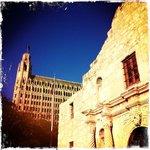 Alamo & Emily Morgan