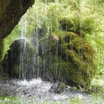 Waterfall curtain in the castle grounds