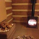 Cozy Cabin!