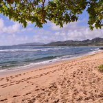 Coarse sandy beaches