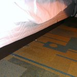 Debris under bed - easy access for dogs