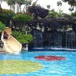 slide at fun pool