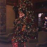 Tree in lower lobby