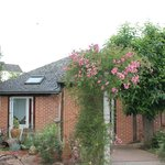 Our detached cottage suite (2 rooms in this building)