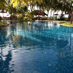 Clear blue sparkling pool in tropical garden setting
