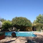 Der Swimming-Pool