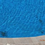 more dirt in outdoor pools