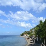Diving in Anilao