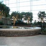 Fountain 2012