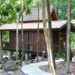 Our chalet (509)