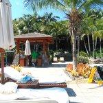 Sunbathing Station
