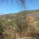 vue de la terrasse de la maison