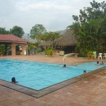 Pool area / Piscina
