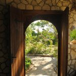 doorway from Red Birch