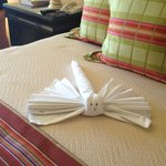 Dragonfly towel waiting for us