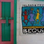 Bequia Island Fever