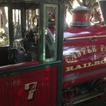 "Castle Park's train that circles the park.  ""Watch out for the buffalo on the"