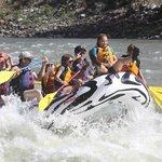 Wild West's Zebra Raft
