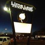 Lime Leaf by night